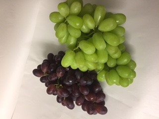 Seasonal Highlight for September – Conference Pears